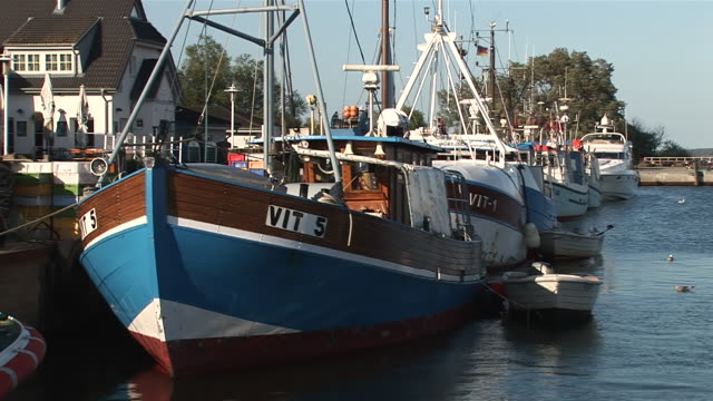 vídeos de stock e filmes b-roll de ms fishing boats tied on hiddensee island  / vitte, mecklenburg-western pomerania, germany - quatro animais