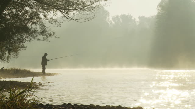 hd dolly: fishing by the misty river - fishing stock videos & royalty-free footage