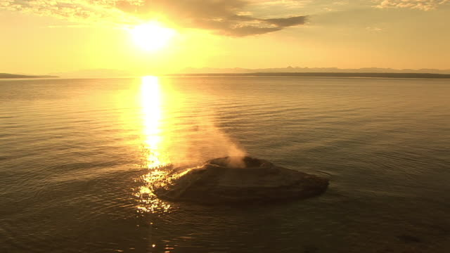stockvideo's en b-roll-footage met ms, fishing cone and yellowstone lake at sunrise, west thumb geyser basin, yellowstone national park, wyoming, usa - sepiakleurig