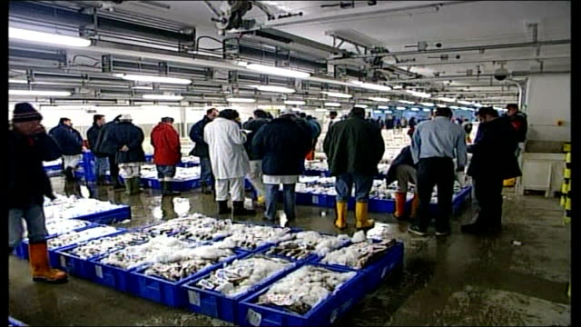 deal cuts north sea cod quotas; file / r02110602 england: suffolk: lowestoft: ext container of fish being unloaded at quayside r20100603 london:... - ローストフト点の映像素材/bロール