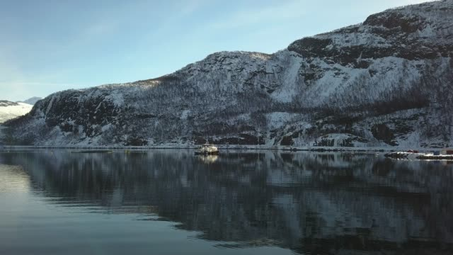 fishing farm in northern norway in a fjord in hilleshamn, tromso province - seafood stock videos & royalty-free footage