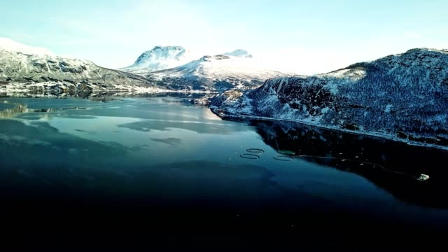fishing farm in norway at the lofoten - saltwater fish stock videos & royalty-free footage