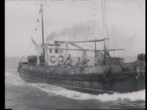 fishing fleet following schools of herring that swim north in south of caspian sea coasts of azerbaijan fishermen preparing and checking their nets... - 1940 stock videos & royalty-free footage