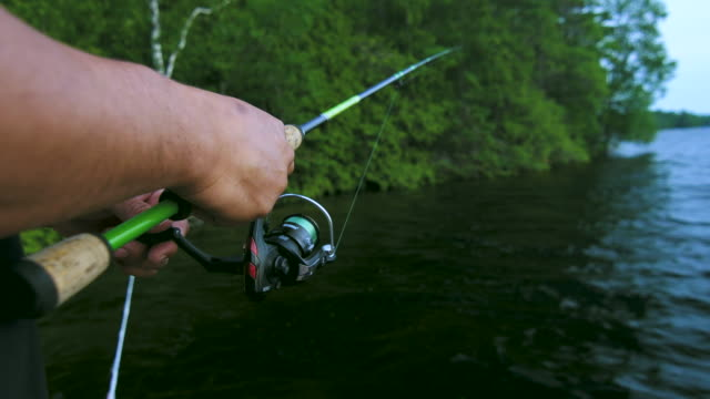 fishing from the dock - rod stock videos and b-roll footage