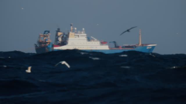 fishing industry: boats at work at sea - rete da pesca commerciale video stock e b–roll