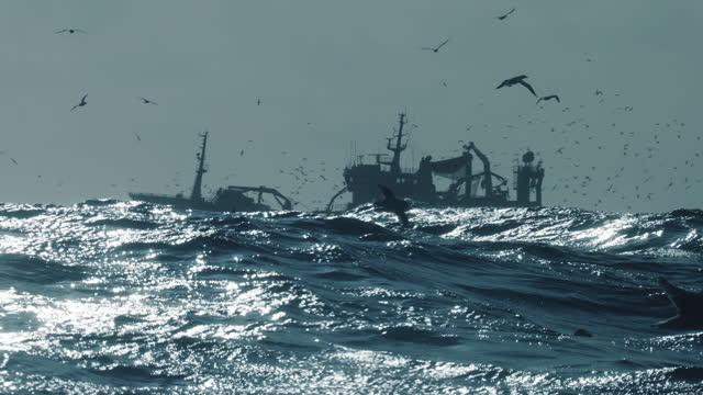 stockvideo's en b-roll-footage met collectie visserij-industrie: visbootvissen in een ruwe zee - vissersboot