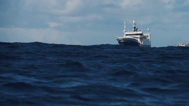 vídeos de stock e filmes b-roll de fishing industry collection: fish boat fishing in a rough sea - captura de peixe