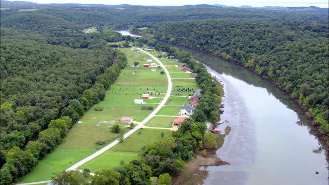 fishing lodges on the white river  - aerial view - arkansas, baxter county, united states - arkansas stock videos & royalty-free footage