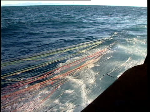 ms fishing net being hauled from water, pan left fishermen guiding net onboard fishing boat, pacific ocean, nz. - pulley stock videos & royalty-free footage