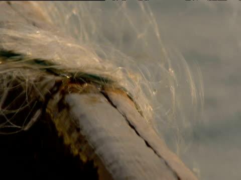 vídeos de stock e filmes b-roll de fishing net being pulled from sea onto boat india - rede de pesca comercial