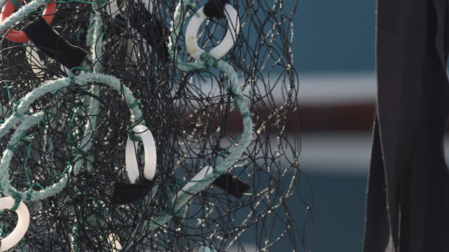 """fishing net hangs in harbour, nova scotia, canada - """"bbc natural history"""" stock videos & royalty-free footage"""