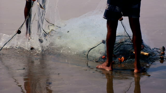 fishing net - netting stock videos and b-roll footage