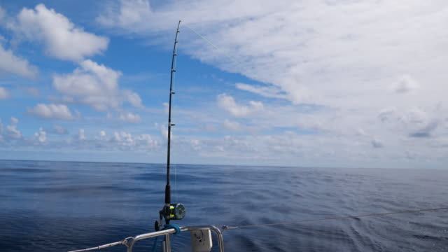 fishing on a sailboat in ocean - fishing rod stock videos & royalty-free footage