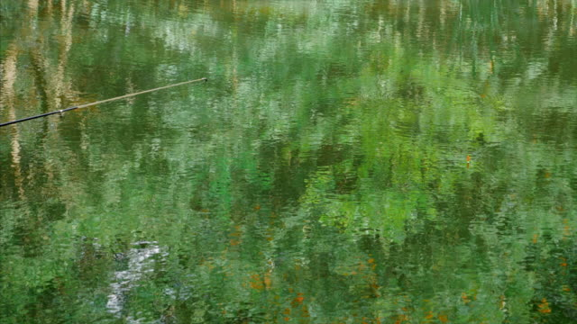 Fishing rod and float on the water