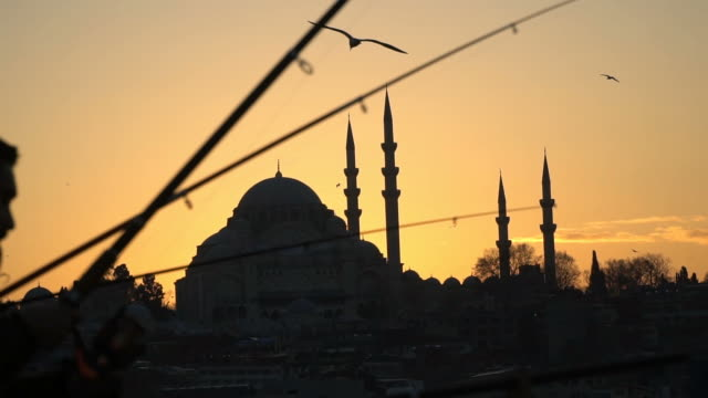 Fishing Rods and Suleymaniye Mosque