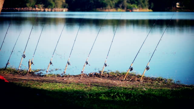 Fishing rods beside the lake.