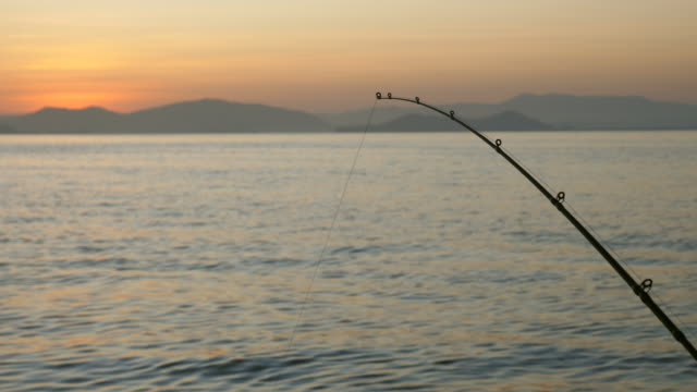 fishing rods on ocean at sunrise - fishing industry stock videos & royalty-free footage