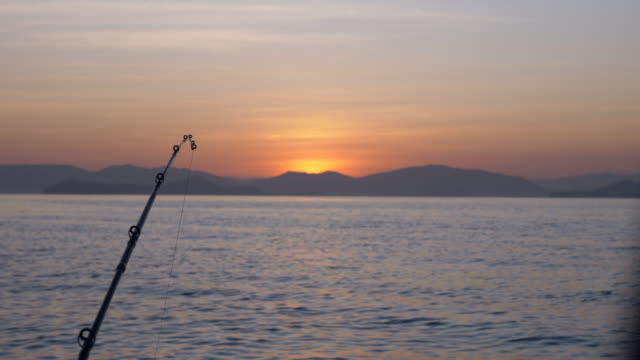 fishing rods on ocean at sunrise - fishing rod stock videos & royalty-free footage