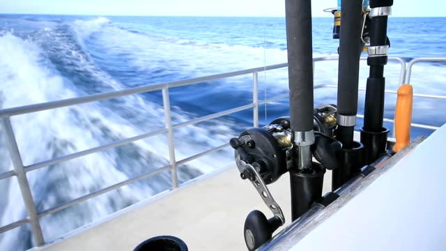 fishing rods - salt water fish stock videos & royalty-free footage