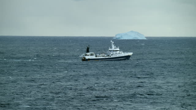 fishing trawler and iceberg in arctic waters - trawler stock videos & royalty-free footage
