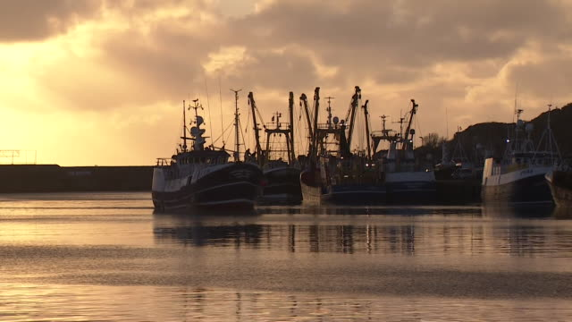 fishing trawler moving through newlyn harbour cornwall at dawn - fishing stock videos & royalty-free footage