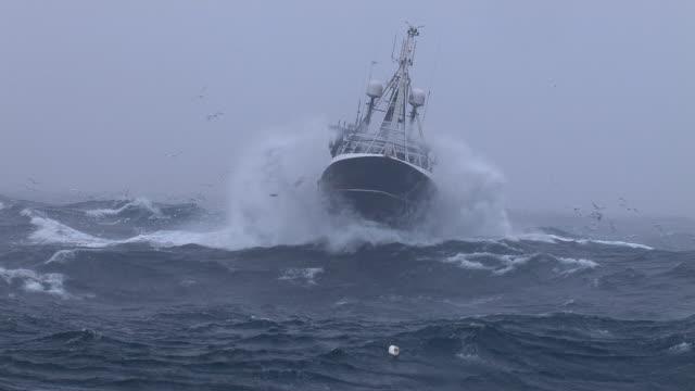 fishing trawler on rough atlantic ocean, scotland, uk - seagull stock videos & royalty-free footage