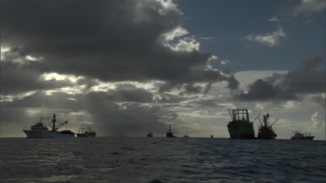 vídeos de stock e filmes b-roll de fishing vessels lie at anchorage, pohnpei, fsm - ancorado