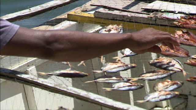 fishing village hand turning dried fish zoom out long shot man at work - fishing village stock videos and b-roll footage
