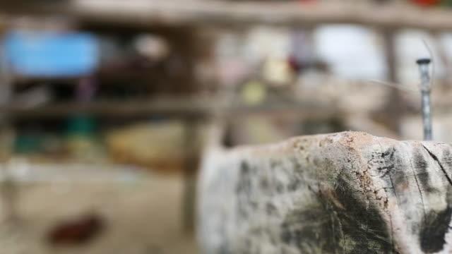 fishing village in papua new guinea - sn�� bildbanksvideor och videomaterial från bakom kulisserna