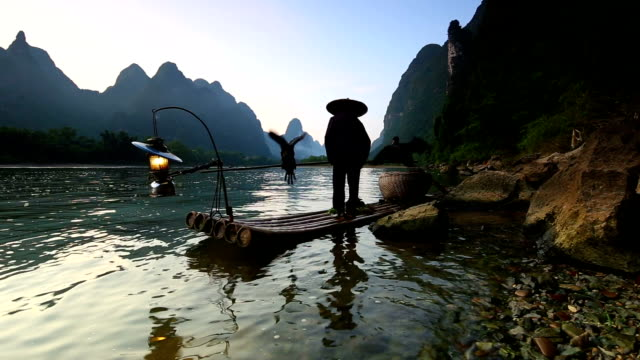 stockvideo's en b-roll-footage met fishman in lijiang rivier - cormorant