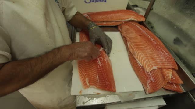 fishmonger cleaning salmon in the fish market of central public market of porto alegre, rio grande do sul state, brazil - alegre stock videos & royalty-free footage