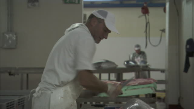 a fishmonger sharpens his knife and fillets a large fish in a food-processing plant. - apron stock videos & royalty-free footage