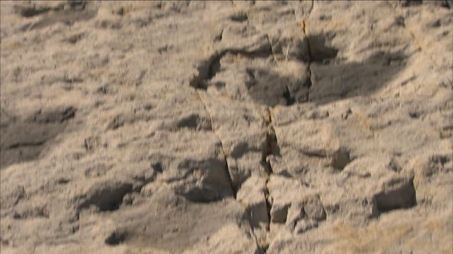 a fissure runs between dinosaur footprints at dinosaur ridge in morrison, colorado. - rock stock videos & royalty-free footage