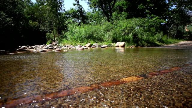 vidéos et rushes de fit femme coureur parcourt une river crossing - joggeuse