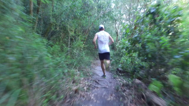 fit man running along a forest path - white shirt stock videos & royalty-free footage