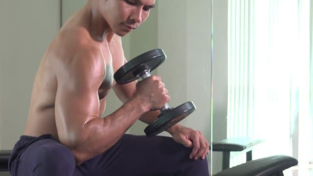 fit sportlichen mann tut kurzhantel curl-übungen im fitnessstudio - bizeps stock-videos und b-roll-filmmaterial
