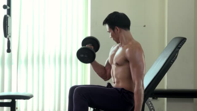 fit sporty man does dumbbell curl exercises in gym - bicep stock videos and b-roll footage