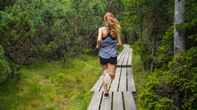 vídeos de stock e filmes b-roll de fit woman athlete running in nature through the woods - vista traseira
