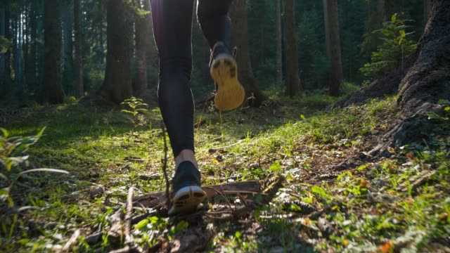 fit woman jogging outdoors in nature, rear view - woodland stock videos & royalty-free footage