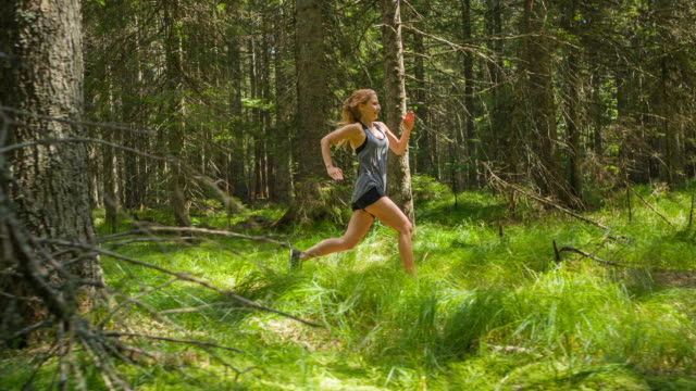 Fit woman running on a sunlit forest trail in summer