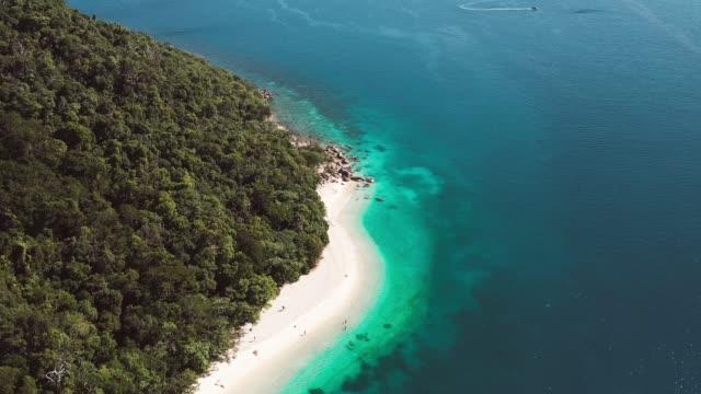 vídeos de stock, filmes e b-roll de fitzroy island beach drone - fitzroy island