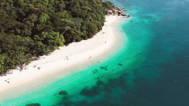 vídeos de stock, filmes e b-roll de fitzroy island drone footage - fitzroy island