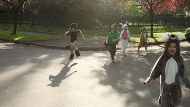five children in fancy dress running towards camera - rabbit animal stock videos & royalty-free footage