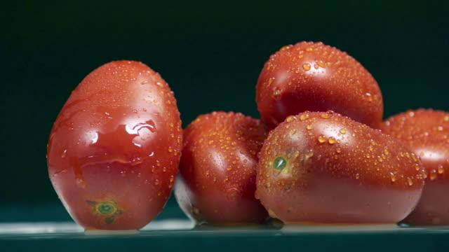 five fresh tomatos - fem objekt bildbanksvideor och videomaterial från bakom kulisserna