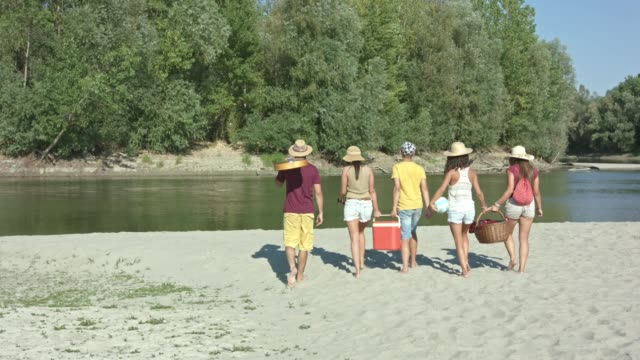 five friends arriving at the beach - cooler container stock videos and b-roll footage