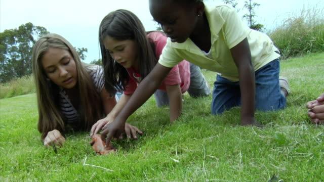 MS, Five girls (7-14) touching lizard on lawn, Richmond, California, USA