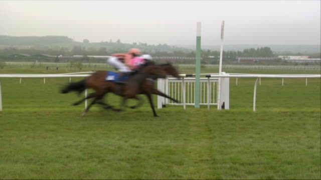 sm ws five jockeys on horses running across finish line during race at newbury racecourse / newbury, england, uk - horse racing stock videos & royalty-free footage