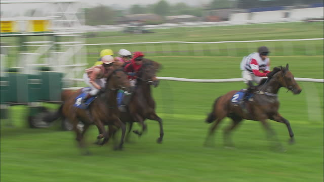 ts ws zi zo five jockeys on horses running out of gates at start of race at newbury racecourse one takes lead while three others follow close behind until last horse catches up / newbury, england, uk - gate stock videos & royalty-free footage