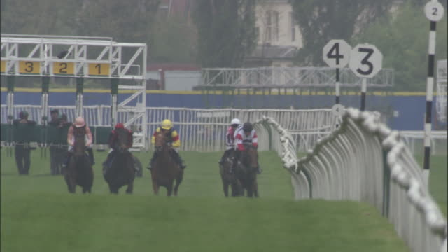 slo mo ws five jockeys on horses running out of gates during race at newbury racecourse / newbury, england, uk - berkshire england stock videos and b-roll footage