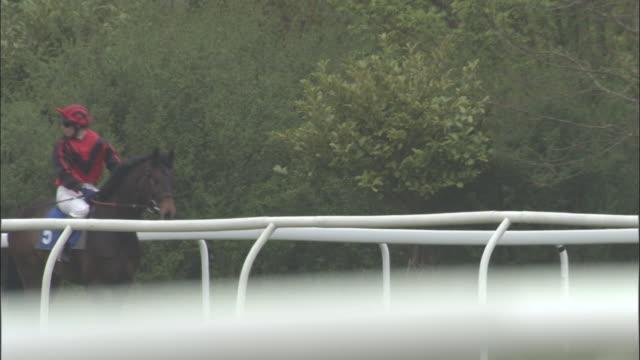 slo mo ws five jockeys on horses walking one behind the next at newbury racecourse / newbury, england, uk - newbury england stock videos & royalty-free footage